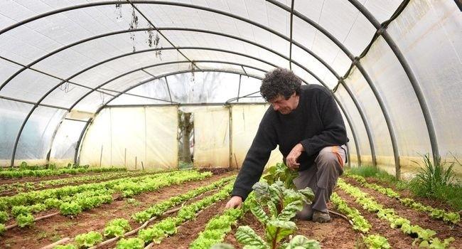L'autosuffisance alimentaire pour les 80 000 habitants de l'agglomération albigeoise en 2020 ?