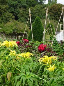 Ce que nos jardins disent de nous