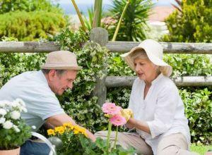 Les bienfaits du jardinage pour les seniors