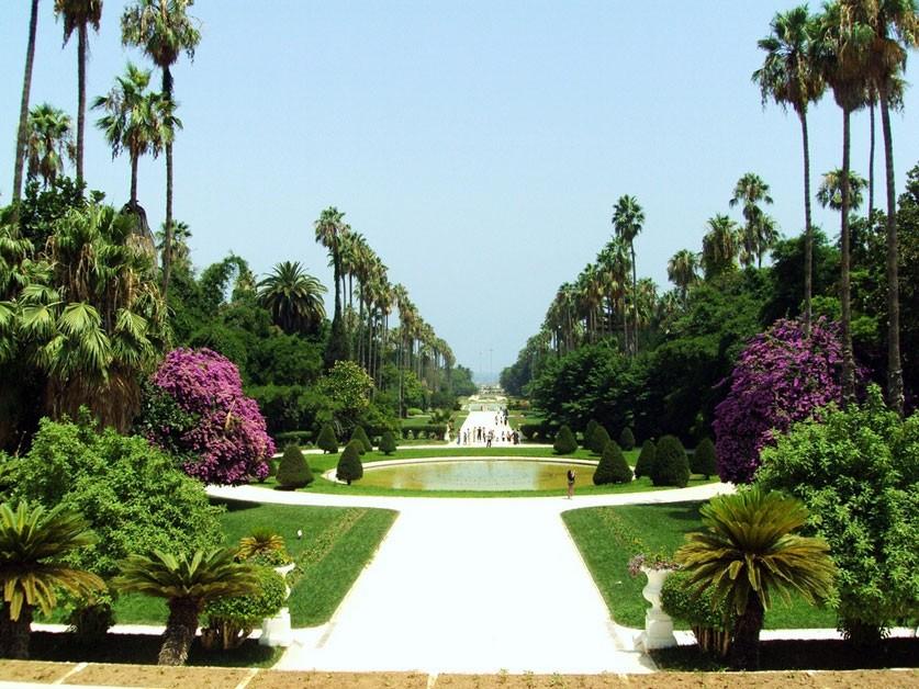 Le Jardin d'Essai d'El Hamma à Alger sur la liste des jardins internationaux de renommée mondiale ?