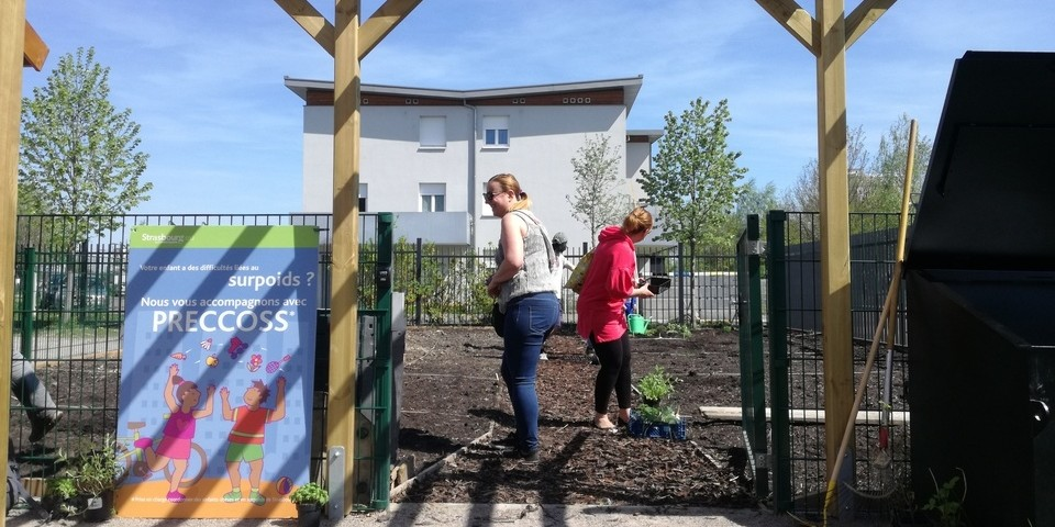 Un premier jardin santé à Stasbourg