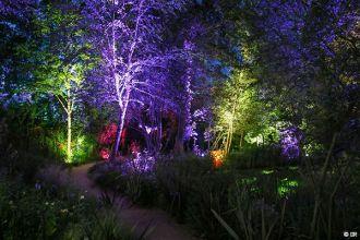 Promenades nocturnes cet été au Festival International des jardins