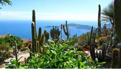 Sélection des plus beaux jardins exotiques à visiter dans le Sud
