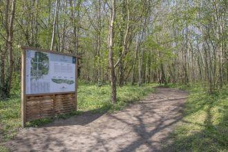 Le ru de Gally : une nouvelle promenade au cœur du parc de Versailles