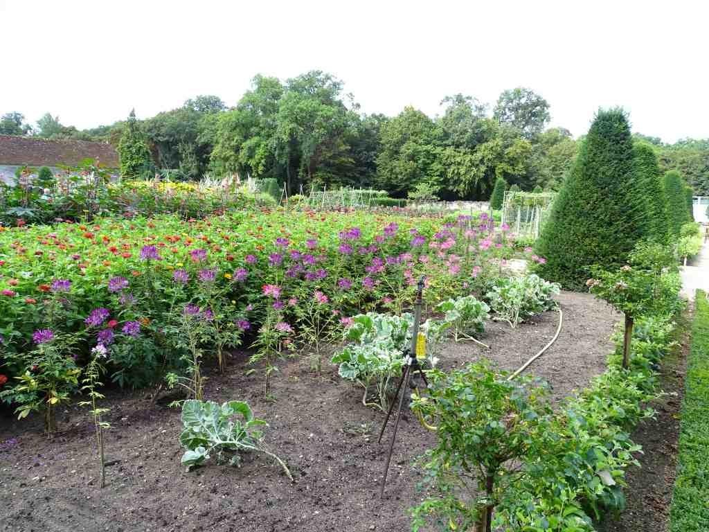Les Jardins Partagés à Saint Brieuc
