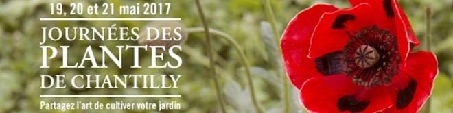 Journ es des plantes de chantilly beaux jardins et potagers - Journee des plantes chantilly ...