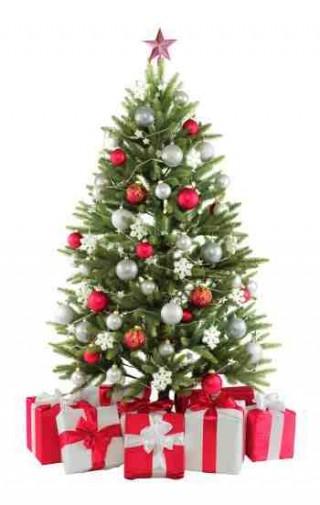 Une astuce pour garder votre sapin de Noël coupé plus longtemps