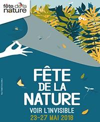 FÊTE DE LA NATURE : La naissance des arbres