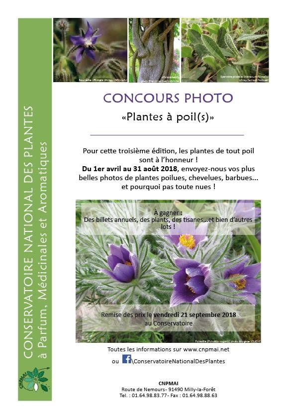"""Concours photo """"Plantes à poil(s)"""" au Conservatoire des Plantes de Milly-la-Forêt (91)"""