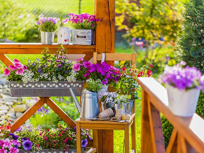 Atelier de jardinage : BIEN FLEURIR JARDINS, TERRASSES ET BALCONS