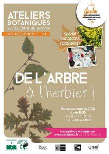 """Ateliers botaniques """"De l'arbre à l'herbier"""" spécialement conçus pour les enfants"""