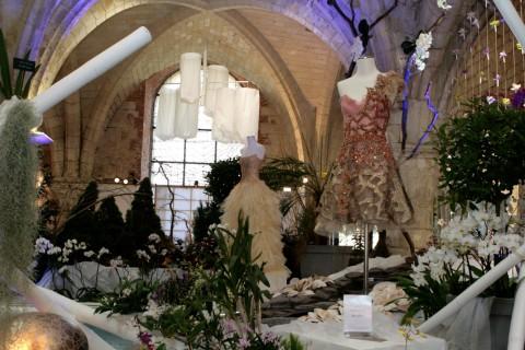 29éme exposition Internationale d'Orchidées
