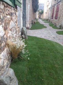 Fête des Plantes et de l'Art au Jardin