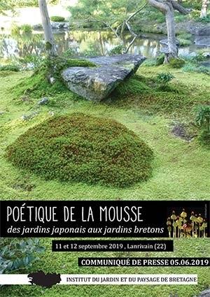 Poétique de la mousse