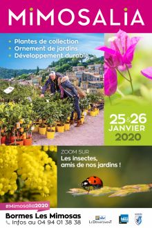 Les insectes amis de nos jardins à l'honneur de Mimosalia 2020