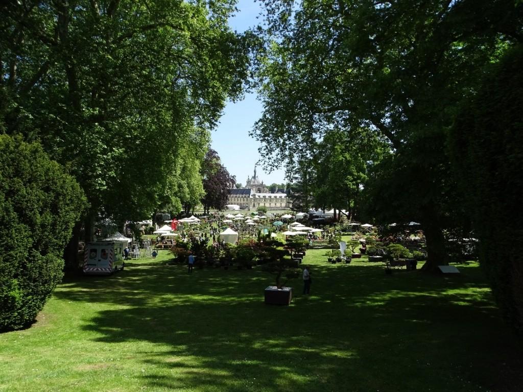 Journées des Plantes  du Printemps  2020 : Le monde dans mon jardin à Chantilly
