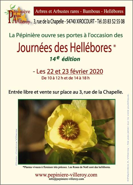14e Journées des Hellébores à Xirocourt