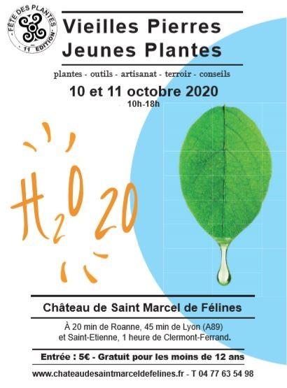 Vieilles Pierres, Jeunes Plantes les 10 et 11 octobre 2020