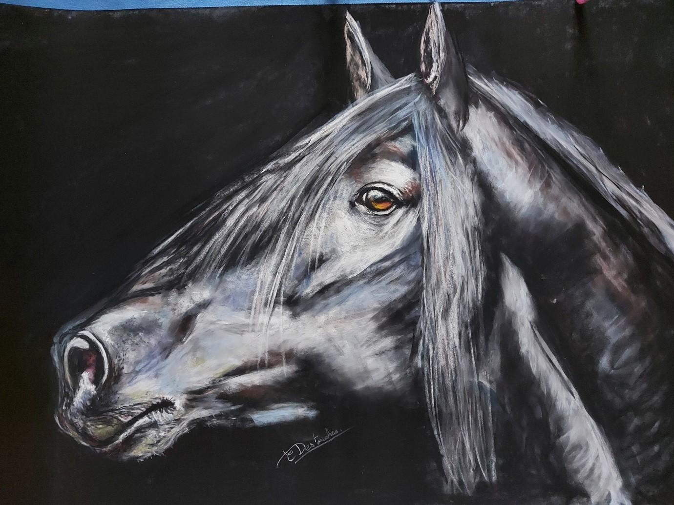 Exposition de peinture Christine DESTOUCHES