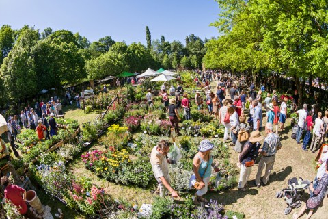 La 25e édition des Journées des plantes d'Albertas