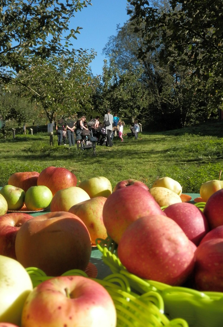4e Fête de la Pomme