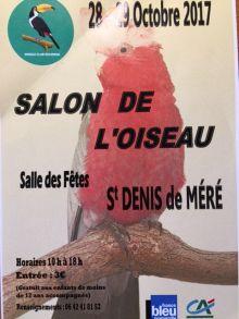 Salon de l'oiseau à st Denis de Méré