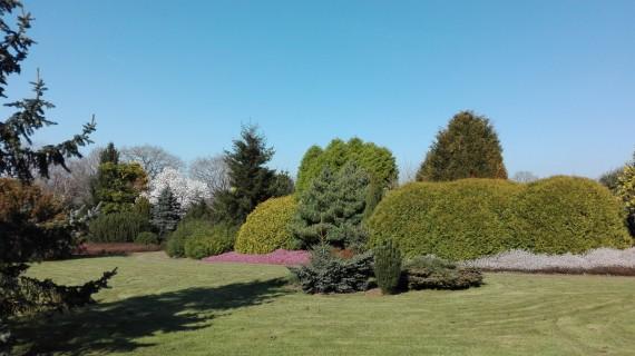 Portes ouvertes Jardin Botanique des Montagnes Noires (29540 SPEZET)